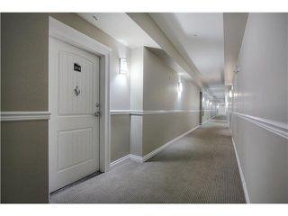 Photo 3: 313 5211 50 Street: Stony Plain Condo for sale : MLS®# E4172448