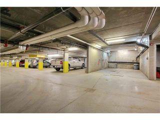 Photo 18: 313 5211 50 Street: Stony Plain Condo for sale : MLS®# E4172448