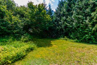 Photo 30: 65932 PARK Avenue in Hope: Hope Kawkawa Lake House for sale : MLS®# R2474671