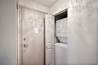 Photo 37: 501 827 Fairfield Rd in : Vi Downtown Condo for sale (Victoria)  : MLS®# 856571