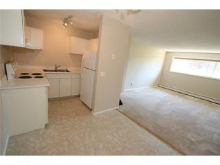 Photo 6: 101 BIG HILL Way SE: Airdrie Condo for sale : MLS®# C3641760