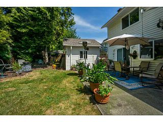 "Photo 19: 10017 158TH Street in Surrey: Guildford House for sale in ""SOMERSET PLACE"" (North Surrey)  : MLS®# F1444607"
