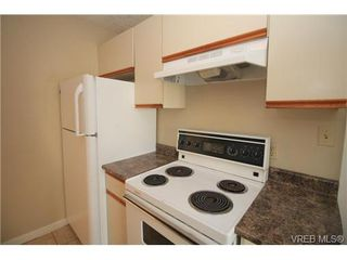 Photo 7: 3167 Glasgow Street in VICTORIA: Vi Mayfair Single Family Detached for sale (Victoria)  : MLS®# 357598
