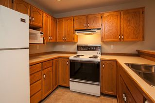"Photo 6: 210 22356 MCINTOSH Avenue in Maple Ridge: West Central Condo for sale in ""Windsor Crossing"" : MLS®# R2013854"