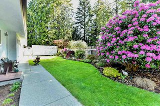 Photo 20: 3566 198A Street in Langley: Brookswood Langley House for sale : MLS®# R2069768