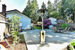 Photo 18: 3566 198A Street in Langley: Brookswood Langley House for sale : MLS®# R2069768