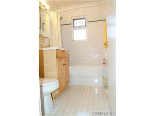 Photo 19: 1723 Albert Ave in VICTORIA: Vi Fernwood House for sale (Victoria)  : MLS®# 736672