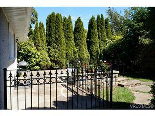Photo 4: 1723 Albert Ave in VICTORIA: Vi Fernwood House for sale (Victoria)  : MLS®# 736672