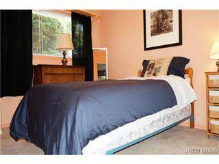 Photo 18: 1723 Albert Avenue in VICTORIA: Vi Fernwood Single Family Detached for sale (Victoria)  : MLS®# 367417