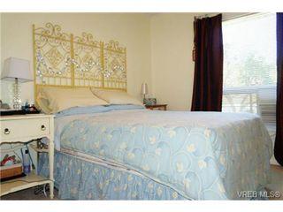 Photo 17: 1723 Albert Avenue in VICTORIA: Vi Fernwood Single Family Detached for sale (Victoria)  : MLS®# 367417