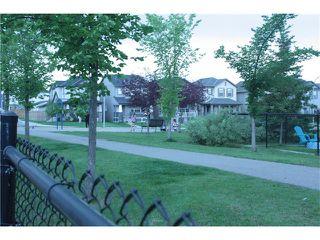 Photo 28: 287 SILVERADO PLAINS Close SW in Calgary: Silverado House for sale : MLS®# C4072831