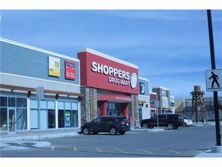 Photo 10: 287 SILVERADO PLAINS Close SW in Calgary: Silverado House for sale : MLS®# C4072831