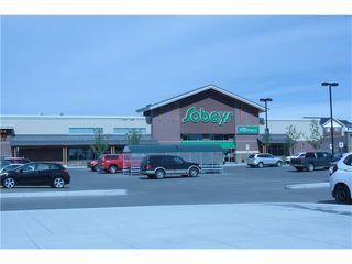 Photo 11: 287 SILVERADO PLAINS Close SW in Calgary: Silverado House for sale : MLS®# C4072831