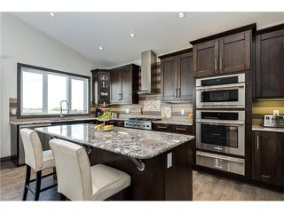Photo 6: 80049 312 Avenue E: Rural Foothills M.D. House for sale : MLS®# C4096639