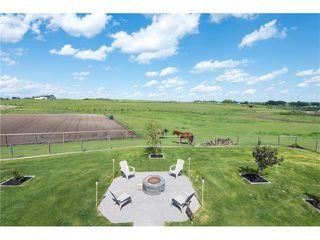 Photo 27: 80049 312 Avenue E: Rural Foothills M.D. House for sale : MLS®# C4096639