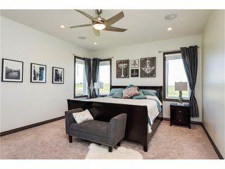Photo 10: 80049 312 Avenue E: Rural Foothills M.D. House for sale : MLS®# C4096639