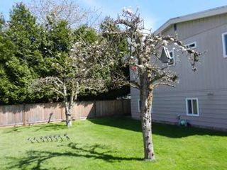 Photo 20: 6163 172 Street in Surrey: Cloverdale BC House for sale (Cloverdale)  : MLS®# R2137585