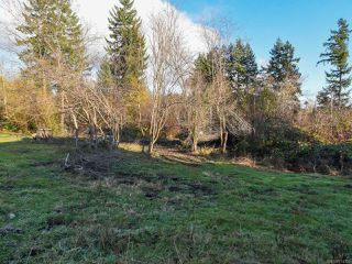 Photo 6: 1544 Dingwall Rd in COURTENAY: CV Courtenay East Land for sale (Comox Valley)  : MLS®# 774303