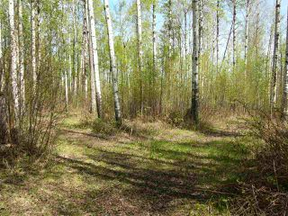 Main Photo: 6 52228 RGE RD 30 Road: Rural Parkland County Rural Land/Vacant Lot for sale : MLS®# E4101094