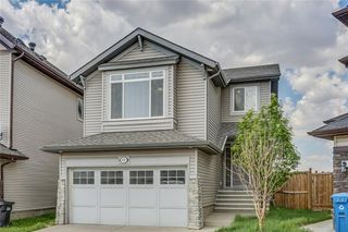 Photo 2: 51 Skyview Springs Cove NE in Calgary: Skyview Ranch Detached for sale : MLS®# C4186074