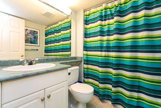 Photo 17: 8663 206B Street in Langley: Walnut Grove House for sale : MLS®# R2273407