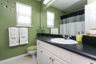 Photo 14: 8663 206B Street in Langley: Walnut Grove House for sale : MLS®# R2273407