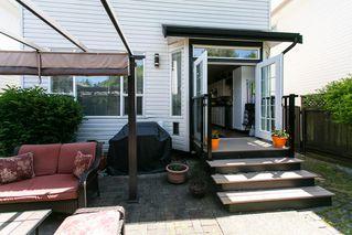 Photo 18: 8663 206B Street in Langley: Walnut Grove House for sale : MLS®# R2273407