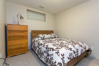 Photo 16: 8663 206B Street in Langley: Walnut Grove House for sale : MLS®# R2273407