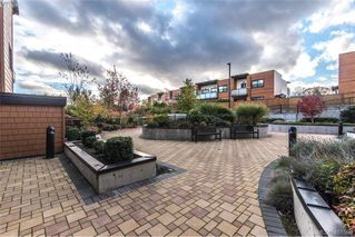 Photo 19: 417 4000 Shelbourne Street in VICTORIA: SE Mt Doug Condo Apartment for sale (Saanich East)  : MLS®# 401506