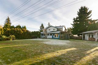 Photo 19: 9505 206A Street in Langley: Walnut Grove House for sale : MLS®# R2326328