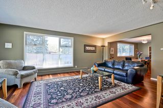 Photo 3: 14003 89 Avenue in Edmonton: Zone 10 House for sale : MLS®# E4140251