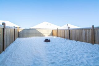 Photo 25: 3077 ARTHURS Crescent in Edmonton: Zone 55 House for sale : MLS®# E4144830