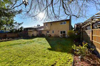 Photo 20: 8089 138 Street in Surrey: East Newton House for sale : MLS®# R2342823