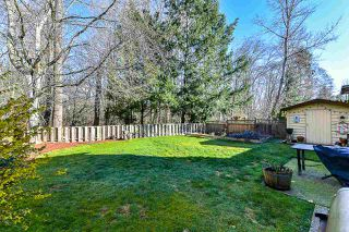 Photo 19: 8089 138 Street in Surrey: East Newton House for sale : MLS®# R2342823