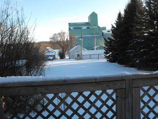 Photo 21: 5007 45 Street: Myrnam House for sale : MLS®# E4147409