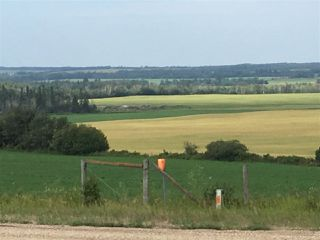 Photo 21: 58424B RR 274: Rural Westlock County House for sale : MLS®# E4153312