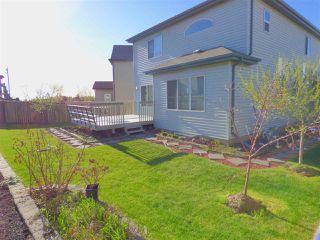 Photo 27: 6139 10 Avenue in Edmonton: Zone 53 House for sale : MLS®# E4154257