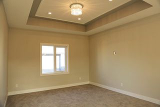 Photo 12: 21620 84 Avenue in Edmonton: Zone 58 House for sale : MLS®# E4156411