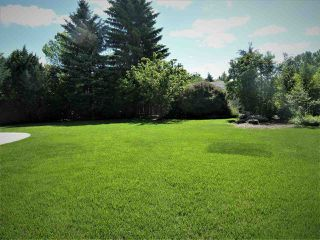Photo 24: 67 WESTMEWS Crescent: Fort Saskatchewan House for sale : MLS®# E4156841