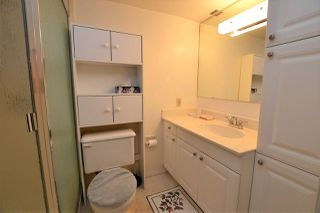 Photo 20: 70 FINCH Crescent: St. Albert House for sale : MLS®# E4157468