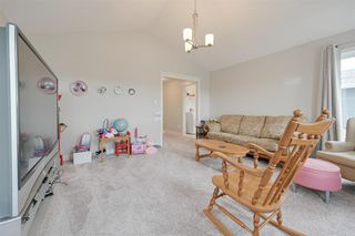 Photo 21: 8 COPPERHAVEN Drive: Spruce Grove House for sale : MLS®# E4162878