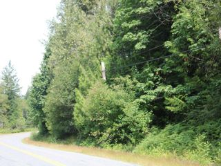 Main Photo: LT 6 Cowichan Lake Rd in LAKE COWICHAN: Du Lake Cowichan Land for sale (Duncan)  : MLS®# 819184