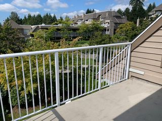"Photo 16: 401 1050 BOWRON Court in North Vancouver: Roche Point Condo for sale in ""Parkway Terrace"" : MLS®# R2415471"