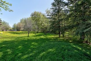 Photo 34: 28 50529 RGE RD 21: Rural Parkland County House for sale : MLS®# E4199542