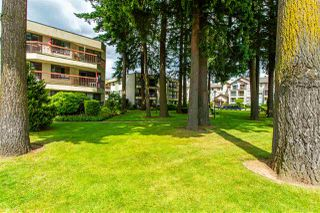 """Photo 34: 231 31955 OLD YALE Road in Abbotsford: Abbotsford West Condo for sale in """"EVERGREEN VILLAGE"""" : MLS®# R2477163"""