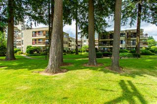 """Photo 35: 231 31955 OLD YALE Road in Abbotsford: Abbotsford West Condo for sale in """"EVERGREEN VILLAGE"""" : MLS®# R2477163"""