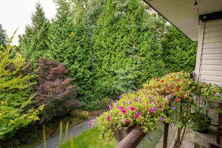 "Photo 20: 301 7139 18TH Avenue in Burnaby: Edmonds BE Condo for sale in ""CRYSTAL GATE"" (Burnaby East)  : MLS®# R2506108"