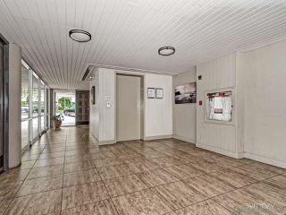 Photo 19: LA JOLLA Condo for rent : 1 bedrooms : 2510 TORREY PINES RD #312