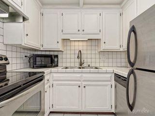 Photo 9: LA JOLLA Condo for rent : 1 bedrooms : 2510 TORREY PINES RD #312
