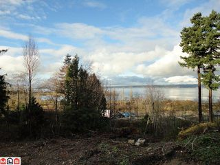 Photo 8: 12603 CRESCENT Road in Surrey: Crescent Bch Ocean Pk. House for sale (South Surrey White Rock)  : MLS®# F1128336